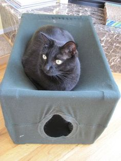 Instructable: PVC and t-shirt Kitty Condo