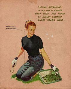 Retro Humor, Vintage Humor, Vintage Comics, Sarcastic Quotes, Funny Quotes, Funny Memes, Hilarious, Vintage Pop Art, Retro Art