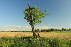 Region of Podlasie, eastern Poland. Painting Inspiration, Poland, Places To See, Jesus Christ, Country, Outdoor, Posts, Garden, Fotografia
