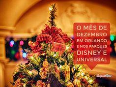 Quer saber como será o mês de Dezembro em Orlando e nos parques da Disney e…