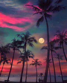 God's beauty - Moon - Summer - Sunset - Beach - Palm trees