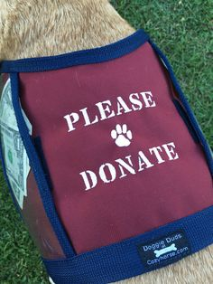 Dog Donation Vest - Fundraising Dog Vest with large clear pockets for  donations - Hunter Orange vest - PLEASE DONATE - size Medium - 1aed0f5cb