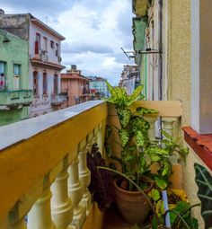 Cuban homestays are a great bargain and a priceless cultural experience. Stay with a Cuban family and immerse yourself in the culture, travel like a local, and save on hotel costs. If you love Airbnb, you will love a homestay in Cuba.