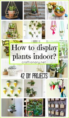Creative ways to display plants indoor are your guide to stylish home decoration with houseplants using clever and unforgettable DIY ideas with tutorials.