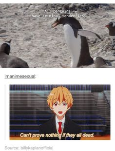 Off is the only English dubbed Free! - Penguin Funny - Funny Penguin meme - - Off is the only English dubbed Free! The post Off is the only English dubbed Free! appeared first on Gag Dad. All Anime, Anime Manga, Anime Life, Anime Stuff, Nagisa Free, Maou Sama, Splash Free, Free Eternal Summer, Makoharu