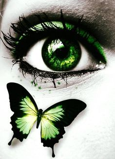 Amazing Learn To Draw Eyes Ideas. Astounding Learn To Draw Eyes Ideas. Gorgeous Eyes, Pretty Eyes, Cool Eyes, Butterfly Eyes, Green Butterfly, Butterflies, Eyes Artwork, Aesthetic Eyes, Crazy Eyes