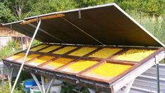 How To Make Your Own Solar Food Dehydrator - Green Options Community - this is a design that works well in humid conditions