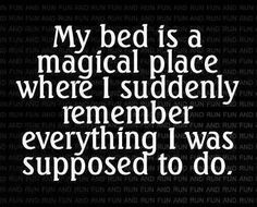 My bed is a magical place.