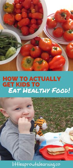 Zero to Hero Nutrition-How to Actually Get Kids to Eat Healthy Food! Image Healthy Food, Healthy Foods To Eat, Healthy Weight, Healthy Eating For Kids, Easy Healthy Breakfast, Healthy Living, Healthy Chicken Recipes, Diet Recipes, How To Cook Fish