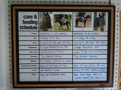 Neat idea! - Care Feeding Schedule dry erase board customized by Pappy's Shanty