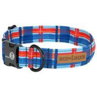 Harbor, eco-Lucks collar from Dublin Dog.