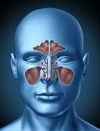 Sinus Congestion From Mold Exposure .....Causes, Treatment, Eliminating Mold