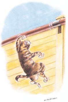 The Katzecure pole spinning in action - PVC pipe fence for kitties