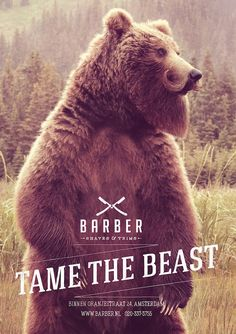 Dutch ad agency 180 created this new ad campaign for Amsterdam-based barber shop Barber Shaves & Trims titled Tame the Beast features large, wild animals with extremely dapper beards and mustaches.