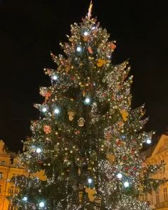 Christmas market in Prague, Czech republic - diy chri Christmas Tree Gif, Prague Christmas, Christmas Scenery, Merry Christmas Wishes, Christmas Background, Christmas Images, Christmas Wallpaper, Christmas Greetings, Christmas Lights