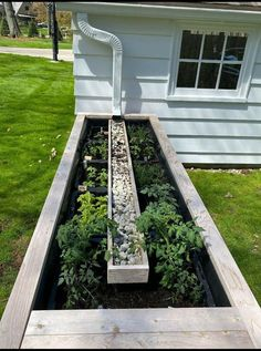 Garden Yard Ideas, Lawn And Garden, Garden Projects, Home And Garden, Garden Water, Patio Ideas, Rain Garden, Backyard Ideas, Cool Garden Ideas