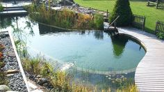 natural pools | MTV Geek – Ditch The Chemicals With A Biotop Natural Pool