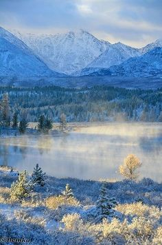 Altai, Russia - Алтай, Россия