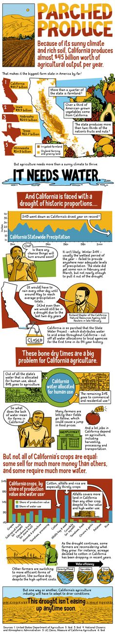 Fantastic infographic on the drought here in California. Parched Produce: California Agriculture in a State of Drought - CA is faced with a drought of historic proportions Ag Science, Plant Science, Physical Science, California History, California Love, California Agriculture, Ap Environmental Science, California Drought, Classroom Hacks
