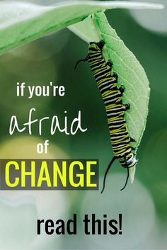 You might want to make some changes to your lifestyle, but are scared to at the same time. Totally normal! Found out what you can do about it!