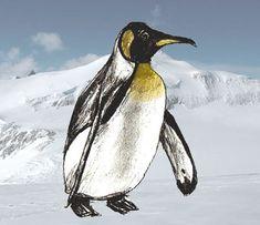 Как нарисовать пингвина поэтапно