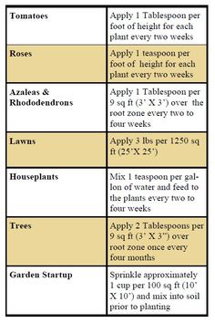 Epsom Salt in the Garden - helps acidic plants (like tomatoes) look greener and healthier by supplying much needed magnesium, which most soils do not contain enough of.