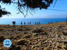 Holiday and activities on Crete Greece - Zorbas Island apartments in Kokkini Hani, Crete Greece 2020 Crete Greece, Walking In Nature, Island, Beach, Water, Holiday, Outdoor, Beautiful, Snorkeling