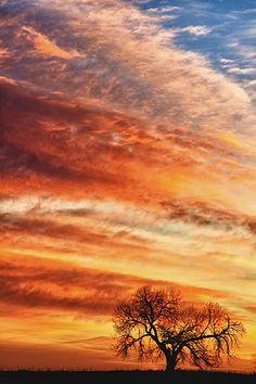 ✿ڿڰۣ Morning Has Broken - North Boulder County, Longmont, Colorado   #nature #photography #clouds