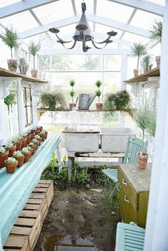 Color inspiration - living room DIY rustic window greenhouse - Take the full tour of this hand built greenhouse made out of antique windows inside & out! Backyard Greenhouse, Small Greenhouse, Greenhouse Plans, Old Window Greenhouse, Greenhouse Shelves, Portable Greenhouse, Greenhouse Wedding, Greenhouse Tables, Homemade Greenhouse