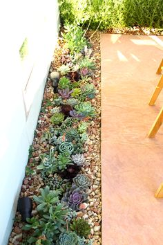 Guest Post: Designing a Succulent and Herb Garden on the Patio | Hatch: The Design Public® Blog