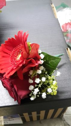 Bruidegomcorsage