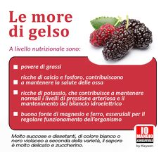 Le more di gelso  #moredigelso
