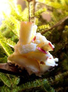 大忙しのクリスマスディナーにオススメお手軽サイドメニュー☆りんごが皮ごとたっぷり入るので、赤と白のコントラスト良し - 28件のもぐもぐ - りんご主役のポテトサラダ by ChonkoDish