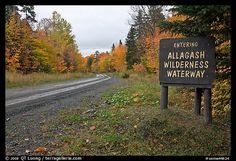 Allagash Wilderness Waterway, Maine, USA