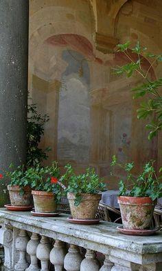 cassiaviviani:via Villa Torrigiani, Tuscany, Italy | varandas | Pinterest