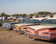 1959 CHEVYs line the bone yard.