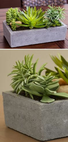 Gorgeous rectangle concrete planter with plants. This little flower pot is perfect for our living room. I really love this simple home decor idea. #ad #concrete #planter #succulent #flowerpot #homedecor #cement
