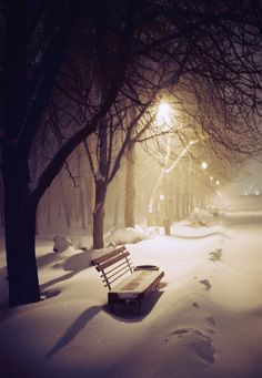 Cold winter dreams by Ransky park landscape beauty winter cold night light cityscape film beautiful bench snow konica mood Kyiv K Winter Szenen, Winter Magic, Winter Night, Snow Night, Cold Night, Winter Photography, Nature Photography, Travel Photography, Snow Scenes