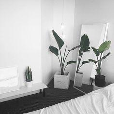 10 Inventive Tips AND Tricks: Warm Minimalist Home Grey minimalist bedroom color scheme.Minimalist Bedroom Curtains Headboards minimalist home tips modern.Simple Minimalist Home Couch. Modern Minimalist Bedroom, Interior Design Minimalist, Minimalist Decor, Modern Bedroom, Bedroom Decor, Minimalist Style, Design Bedroom, Contemporary Bedroom, Minimalist Kitchen