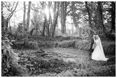 shauna&jonathan013 Civil Ceremony, November 2015, Wedding Images, Beautiful Gardens, Family Photos, Real Weddings, Wedding Dresses, Outdoor, Family Pictures