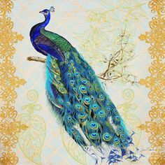 Beautiful Peacock-b Painting by Jean Plout