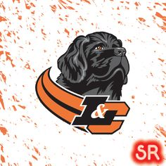 Lewis & Clark Pioneers Lewis And Clark College, Hockey Logos, Sports Logo, College Football, North West, Kids Rugs, Portland Oregon, Fictional Characters, Sports