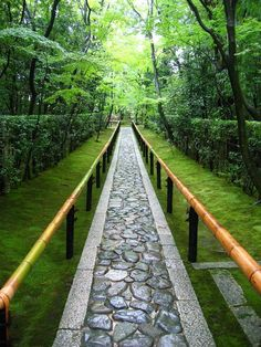 koto-in sub-temple of daitoku-ji, kyoto - Love this pahway