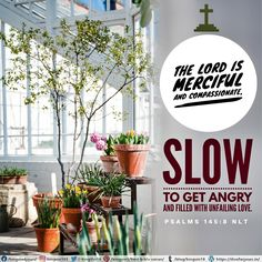 The Lord is merciful and compassionate, slow to get angry and filled with unfailing love. Psalms 145:8 NLT Best Bible Verses, Spiritual Needs, Compassion, Psalms, Glass Vase, Lord