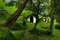 I wonder if this is a house or if it is two little shelters....It's a hobbit hill...