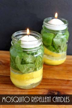 Mosquito repellent candle - best DIY homemade natural mosquito repellent candles with lemon and essential oils to repel mosquitos indoors in your home and outdoors in the garden, backyard or camping Diy Mosquito Repellent, Insect Repellent, Natural Mosquito Repellant, Fly Repellant, Mosquito Repelling Plants, Mosquito Repellent Essential Oils, Essential Oil Bug Spray, Bug Repellent Candles, Mosquito Yard Spray