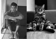"""Série """"Des hommes et des chatons"""",  """"Hot guys and kittens"""". Assis, sitted."""