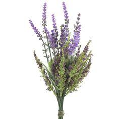 sprigs of wild lavender