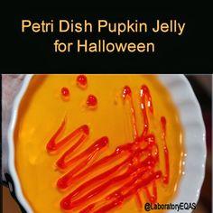 Halloween fun for the laboratorians -   Petri dish pumpkin jelly for lab geeks