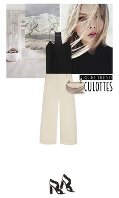 """."" by hil4ry ❤ liked on Polyvore featuring TIBI, Brunello Cucinelli, Chloé, Tom Ford, TrickyTrend and culottes"